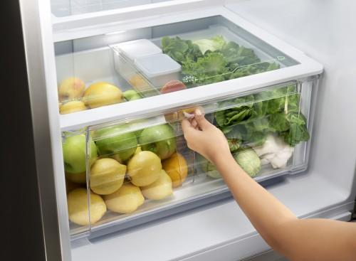 Refrigerador formado em Gastronomia com PHD em Nutrição