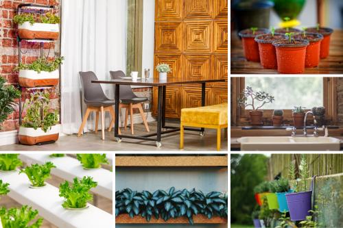 Horta em Apartamento: Confira passo a passo de como fazer a sua!